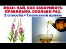 Иван-чай - как заваривать правильно. Сколько раз заваривать. 2 разных способа, заварки 1 лайфхак.
