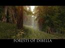 Skyrim SE Mods Forests of Dibella