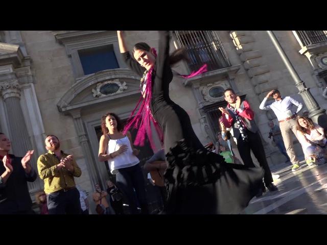 María. Beautiful Flamenco dancer in Granada