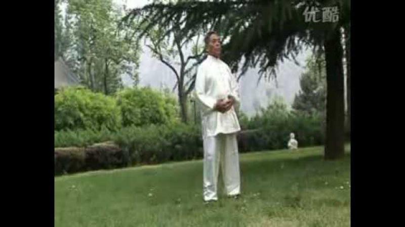 Hunyuan gong fa 5 Feng Zhiqiang