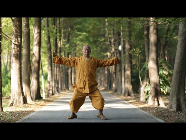 Shaolinsi Yijinjing (Shi Yan Hui shifu) correct))