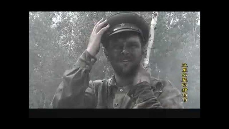 苏联电视剧:这里的黎明静悄悄 18