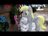 Пони в реальном мире - Дерпи выбирает елочку!