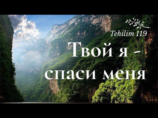 Твой я - спаси меня (Псалом 118/Tehilim 119)