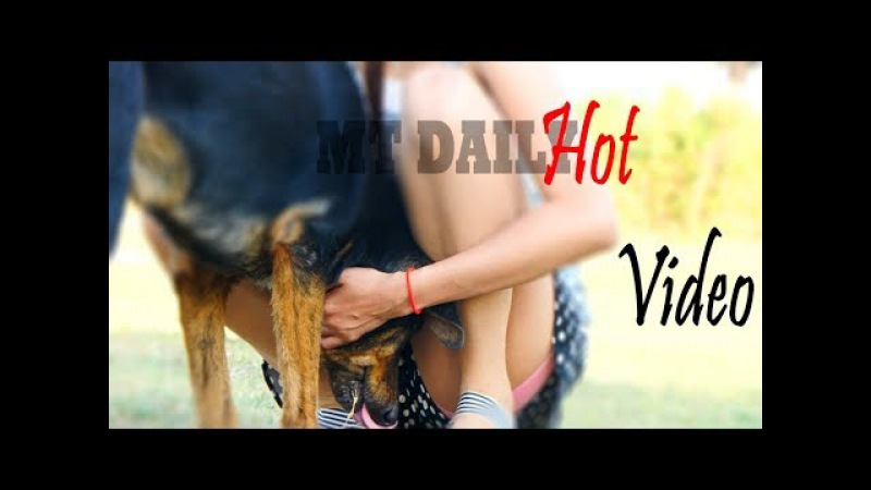 Wow Sooo Clever Baby Dogs at Home The Puppy dogs play with Gorgeous girl 620