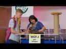 Белладжио котик продается WCF Ring Junior результат 5 20