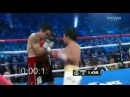 Manny Pacquiao's 7 punch combination in 1.2 seconds ММА 95