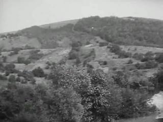 Отрывок из муз. фильма
