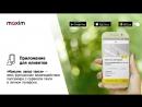 Презентация франшизы Сервиса заказа такси Максим