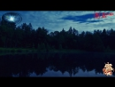 ♛♫♥ Dawid Jurzyk - Mysterious Forest (Original Mix) (Pulsar Recordings) ♥♫♛