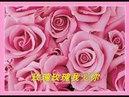 鳳飛飛.. 玫瑰玫瑰我愛你