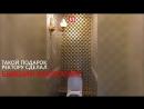 Золотой туалет ректора