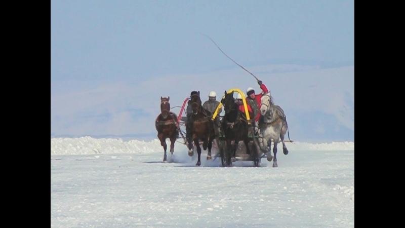 Конные скачки на льду Красноярского водохранилища прошли в Новоселовском районе