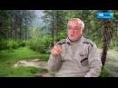 Простатит надо массировать самому народный целитель Анатолий Скороход