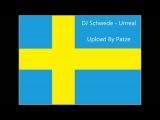 DJ Schwede - Unreal