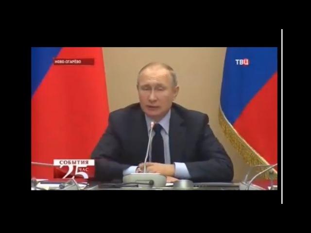 Путин обсудил инициированные ОНФ поправки в Лесной кодекс по лесовосстановлению
