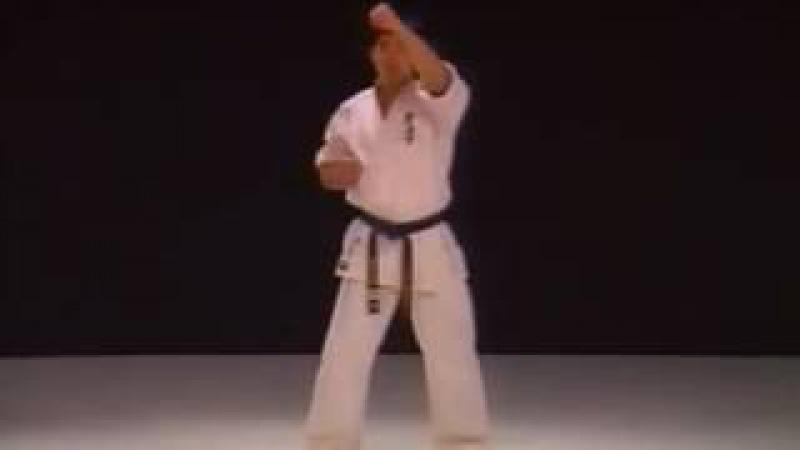 Kihon Geiko Kyokushinkaikan Karate 1