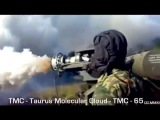 (TMC 65) Taurus Molecular Cloud