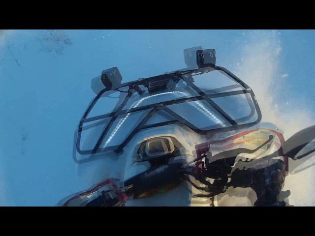 Рубилово по снегу | BM JUMBO 700 | Stels 700 D