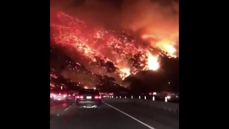 """Ужас-то какой!Калифорния Лос-Анджелес"