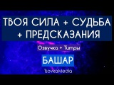 Твоя Сила + Судьба + Предсказания~ Башар (Дэррил Анка) TsovkaMedia