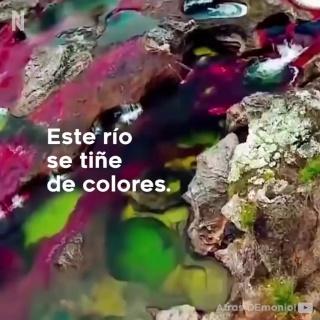 El río más hermoso del mundo se encuentra en Colombia
