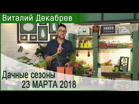 Дачные сезоны с Виталием Декабревым 23 марта2018