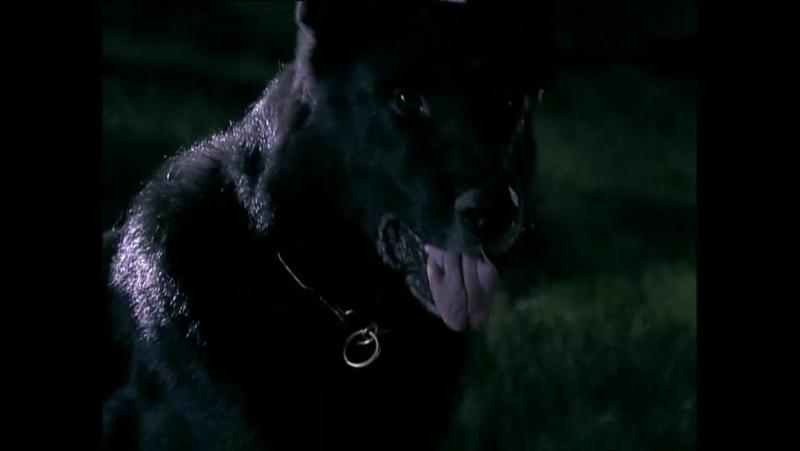 Черная лагуна-(1 сезон) 4 серия