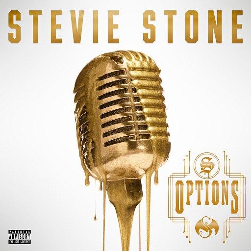 Stevie Stone альбом Options