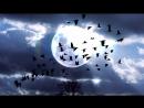 Музыка для Души - Музыка для Сна Гипноз от Стресса (дельта Волны) Глубокий Сон К