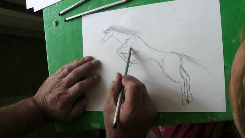 66 Лошадь и верблюд