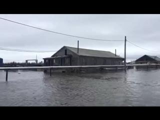 село Усть-Янск тонет