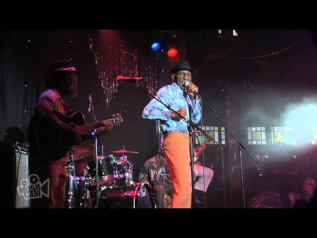 The Jolly Boys - Do It Again (Steely Dan) (Live at Sydney Festival) | Moshcam