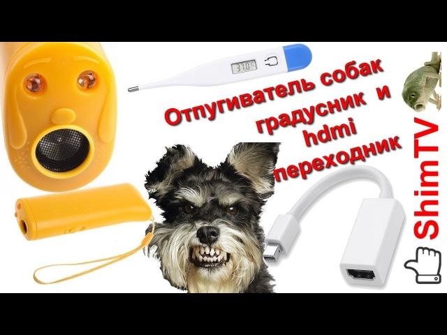 Отпугиватель собак градусник DisplayPort HDMI переходник
