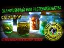 Заброшенное НИИ ботаники Заброшенная страна слайдшоу выпуск 2