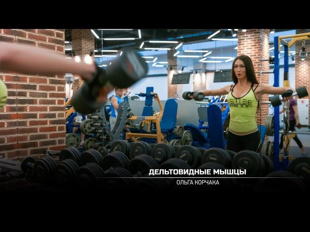 Тренировка дельтовидных мышц. Ольга Корчака.