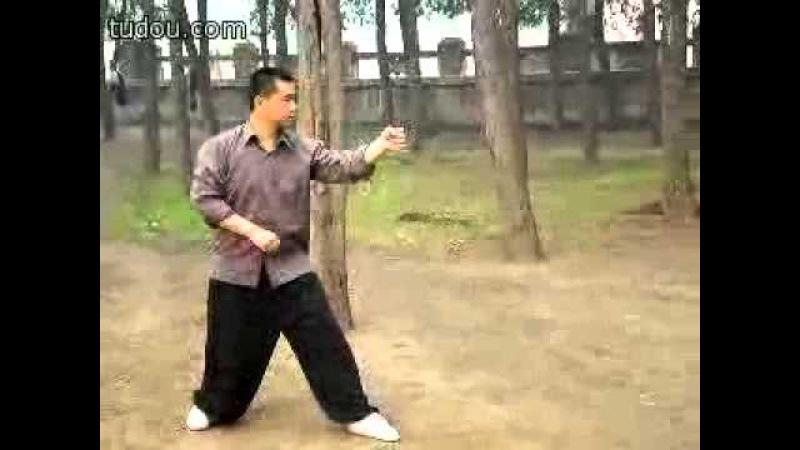 Pei Jiangtao (裴江涛), Song Shi Xingyi (宋氏形意) Wu Xing Quan (五行拳)