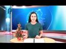 Эфир 28 декабря 2017 Юбилей Дубского ДК Конкурс елочных игрушек