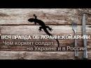 Андрей Ваджра. Вся правда об украинской армии чем кормят солдат на Украине и в России № 21