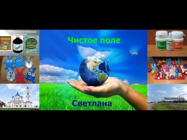 Кружок Самоделкины ПоделкаКошечка из пласт.бутылок