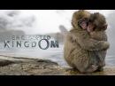 Заколдованное королевство 3D трейлер