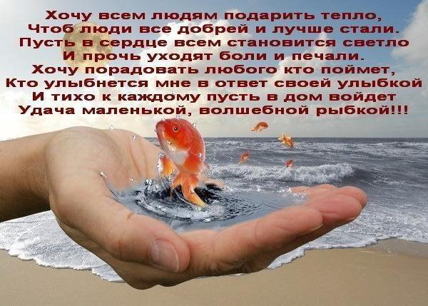 https://pp.userapi.com/c840722/v840722020/23f4c/3Gl_Hxx_Nng.jpg