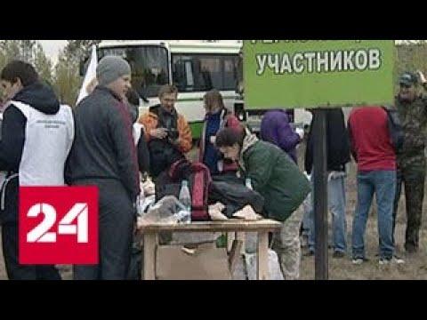 Активисты ОНФ восстанавливают сгоревшие леса в Иркутской области - Россия 24