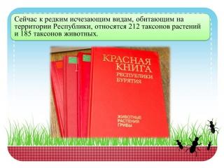 По страницам Красной книги респ.Бурятии