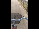 Fiordaliso in bicicletta