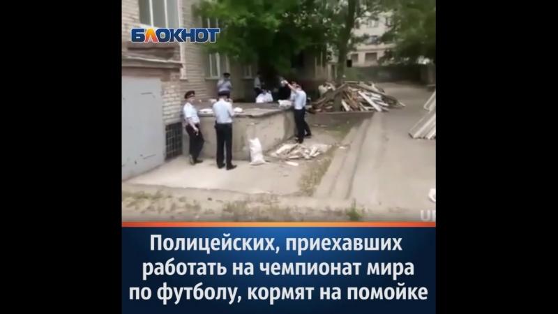 Скандал разразился в Волгограде после того, как один из полицейских разместил в Сети видео обеда