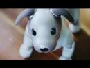 Sony Aibo Robot Dog ERS-1000