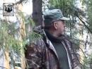 Охота на гуся на болотах