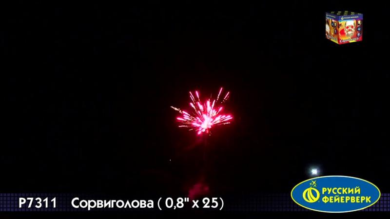 P7311 Сорвиголова(08*25)