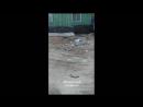 Район УТЖС возле ЦТП 16 мусорка и территория возле мусорки 16 05 18